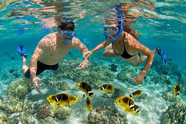 Lặn ngắm san hô ở quần đảo An Thới